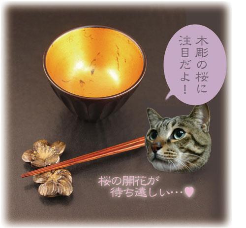 13_3_tokusen.jpg
