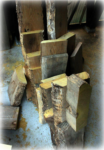 ウルシの木の材 国産漆 日本産漆