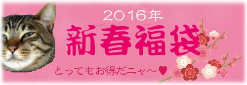 2016_福袋_top2.jpg