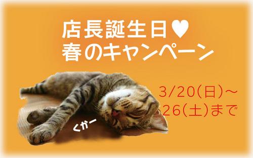 国産漆のうつわ専門店 和×和 春のキャンペーン